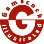 Gamecock_Illustrated_logo